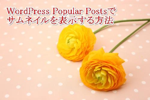 WordPress Popular Postsでサムネイルが表示されない件。こんな単純なことだったの!?